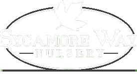 Sycamore Way Nursery